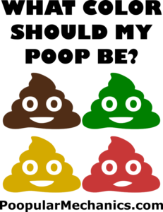 The Color Of My Poop